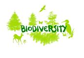 Um, What's Biodiversity?