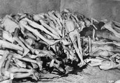 Here is a picture of a gas chamber filled with dead Jewish prisoners. --->