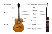 Parts of guitar