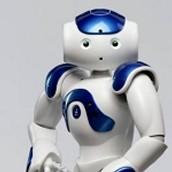 Zora sociale robot