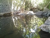 Bridge over tranquil waters in Golan Heights