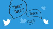 Why follow us on Twitter?