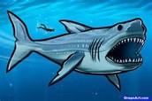 Megladon shark