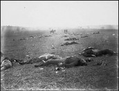 Picture after the battle of Gettsburg