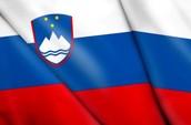 Slovenias flag description/background
