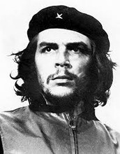 How did Fidel Castro Organize the Attacks?