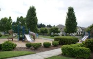 Incredible Community Park