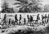 Slave Dealers