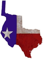 I am what the Republic of Texas needs to survive.