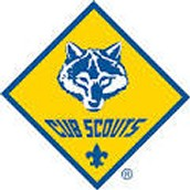 Your Cub Scout Master