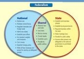 4. Federalism