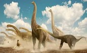 Herd Of Brachiosaurs