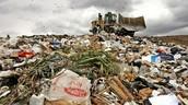 Plastic Bags Hurt Us?
