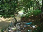 Zona 2: Orillas del río Meléndez