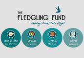 Fledgling Fund
