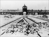 Concentration camp Auschwitz
