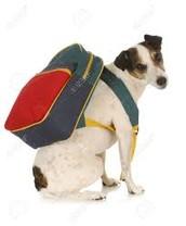 Bring Backpacks!
