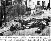 Viet Cong Surrenders