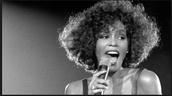 Whitney Houston When She Was In Her 20's