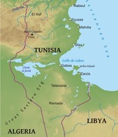 Physical Map of Tunisia