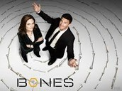 Solve the mystery murder of your essay with Bones!