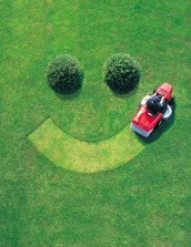 With Solimy Lawn Service, we adhere to all lawn maintenance's.