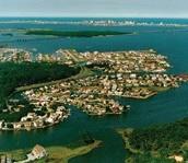 Estuaries are in danger