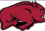 #1 Universty of Arkansas