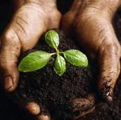 Chcesz poznać korzenie zdrowego światopoglądu?
