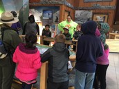 Learning at the Sea Life Center