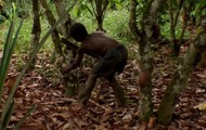 Chocolate Hunting