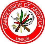 National Peasant Confederation