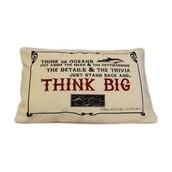 Think Big cushion cover & cushion