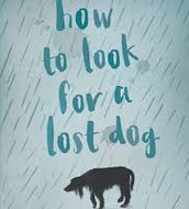 How to look for a lost dog - junior fiction