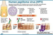 How do People Get HPV?