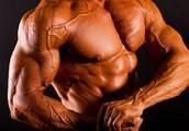 Muscle Core X