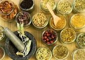 Herbal Medicine Making
