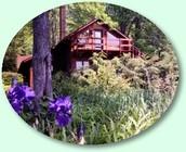Bosque Spa y Centro de Actividades