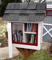Will County Reading Council is looking to install a Little Free Library in our area!