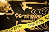 What is forensic Anthropology?