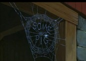This is a web that Charlotte made