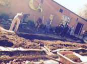 Citizens working on the rain garden