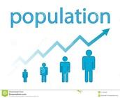 Population Display
