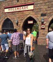 HP World: Train to Hogsmeade!