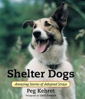 Shelter Dogs: Amazing Stories of Adopted Strays