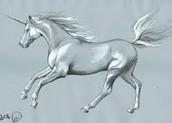 The Gray Unicorn