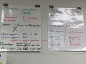 More Anchor Charts in Biology