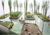 The Floating Garden Chinampas