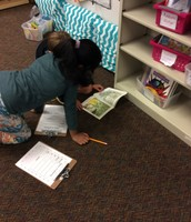 Writing a summary with a partner
