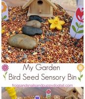 Bird Seed & Sensory Play